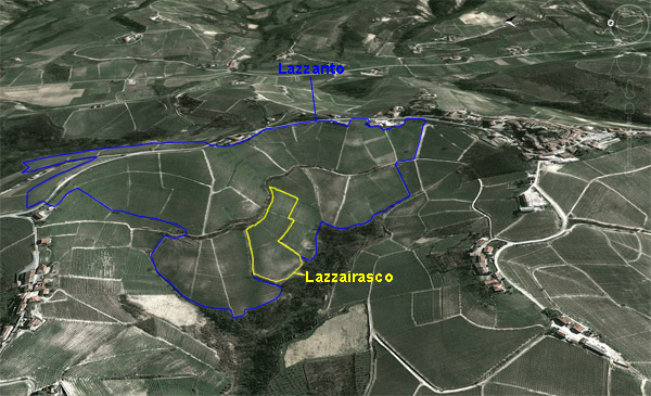Lazzairasco Vineyard